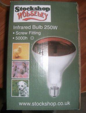 INFARED BULB 250W